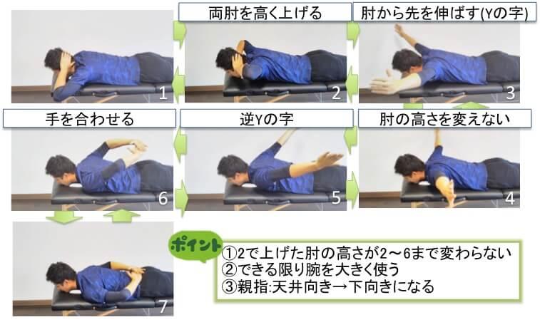 肩甲骨フル可動トレーニングです。肩甲骨周りの筋肉を総動員して肩甲骨の可動域と筋力を高めるトレーニングです。トレーニングの詳しいやり方です。両肘はなるべく高く上げます。そのときに手は頭の後ろに置いたままです。その後、両手でYトレーニングの位置をとります。肘の高さを変えずに逆Yの字の形をとります。3で天井向きだった親指を内向きに回しながら下げていきます。肘の高さを変えずに背中で手を合わせます。手を背中に置いて力を抜いてリラックスします。7から1まで逆再生するように最初の位置まで戻って1回終了です。