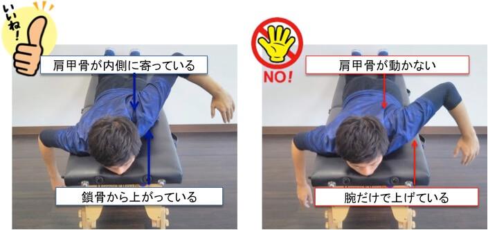 肩甲骨トレーニングはTトレーニングです。うつぶせに寝て肘を引き上げて肩甲骨を動かすというとても簡単そうなトレーニングですが、細かいポイントがいくつかあるので一緒に確認していきましょう。Tトレーニングは腕だけで肘を持ち上げないのというのが重要なポイントです。腕だけでなく、肩甲骨を背中の中央に引きよせることで肘が持ち上げられるイメージやると効果的に肩甲骨周りの筋肉を強化することができます。もう一つ大切なポイントがあります。肩甲骨を動かしやすくするためには「鎖骨」をきちんと使いこなせないといけません。