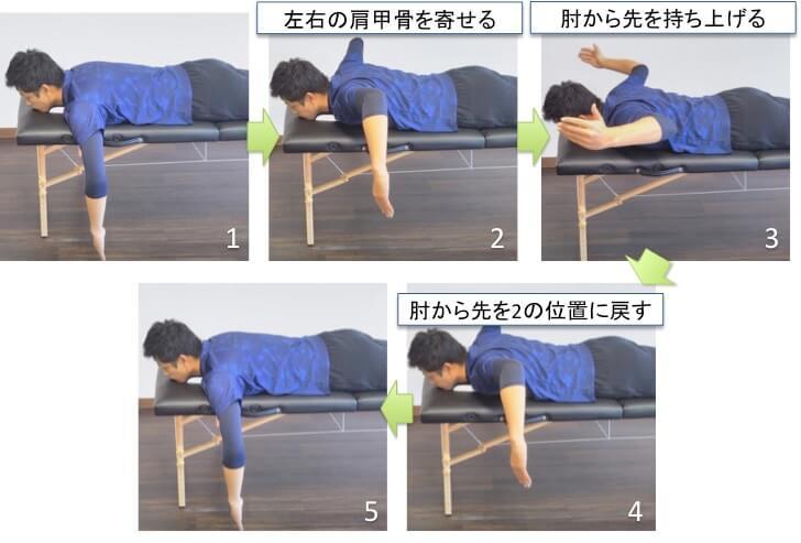 Wトレーニングですが、T・Yトレーニングより負荷が高くなります。  Wトレーニングは左右の腕を同じように動かしていきます。 両腕をベッドの端からおろします。次にTトレーニングの要領で左右の肩甲骨を引きよせます。そして、肘から先を持ち上げるように上げます。その後、肘から先を3の位置に逆戻りしてスタートポジションに戻って1回終了です。