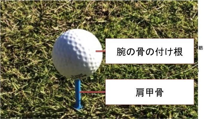 受け皿となる肩甲骨側の面積がものすごく小さいためにボールが落ちそうになりやすいです。