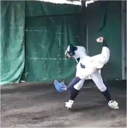 テイクバックで腕を天井向きに引き、ボールの位置を高くすることができるとリリースまでにボールを加速しやくなり、球速アップにつながります。