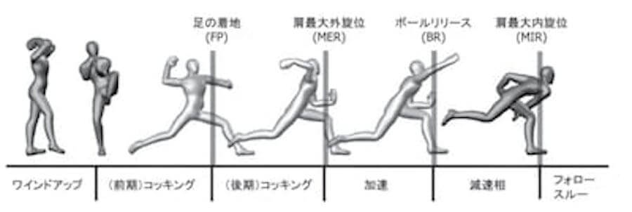 前期コッキングをさらに細かく分類すると、これまで説明してきたオフザバランスがあり、その後は2つのフェーズに分かれます。