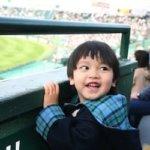 【完全初心者用】野球観戦を120%楽しむ方法9選(試合前から試合終了後まで)
